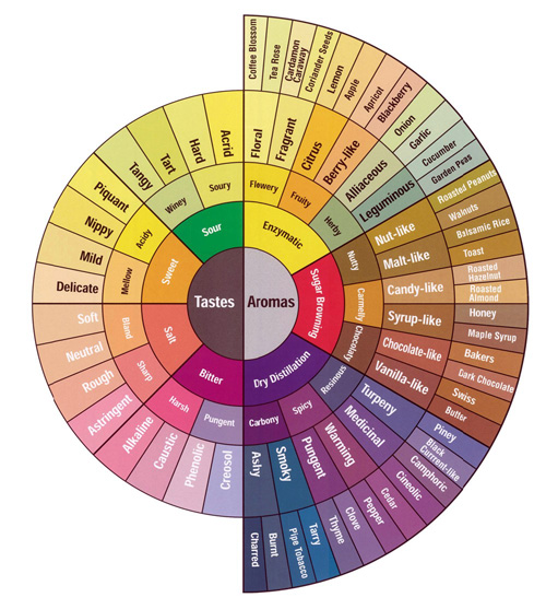 coffee_tasting_flavor_wheel.jpg